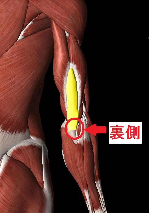 肘を伸ばすと裏側が痛い場合